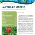 La feuille marine IFRECOR_3_2019_web (1).pdf
