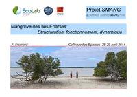 10.SMANG 28 avril 2014 f_Fromard.pdf