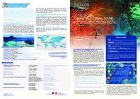 PLAN-ACTION-IFRECOR-angl-web.pdf