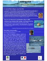 MAY05_lettre_info_Observatoire_Mamiferes_Marins_Lambwara_2005.pdf