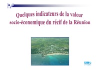 12_Indicateurs valeur socio-eco_IRD_David_RUN.pdf