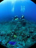 Plongeurs - La Réunion 3_jp quod.jpg