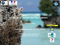 2.REEFCORES_colloque eparses_S.PRAT.pdf