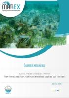 MAREX_096_Suivi poissons herbiers Mayotte.pdf