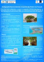 NAT13_Cartographie mangroves OM-flyer.pdf