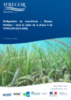 Fiche_synthèse_sous-thème_Herbiers_v2017.pdf
