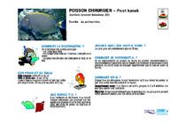 NC07_Fiches poissons_enfants.pdf