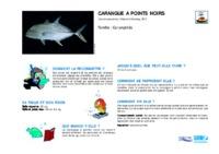caranx_papuensis.pdf