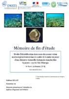 Mémoire TFE Mathieu GRELLIER.pdf