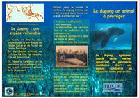 NC03_Dugongs_2003.pdf