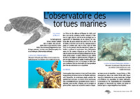 MAY01_Observatoire_tortues_2001.pdf