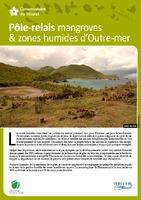 NAT13_Pôle-relais mangroves & zones humides d'Outre-mer.pdf