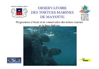 MAY06_Presentation_Tortues_marines_2006.pdf