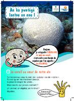 GUAD05_depliant_coralline_guadeloupe.pdf