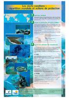 GUAD02_Panneaux récifs.pdf