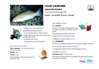 plectropomus_leopardus.pdf