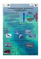 MAY05_Posters_Journee_environnement_2005.pdf