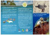 GUAD12_depliant-tortue-kapnat.pdf