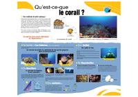 GUAD_Coraux_gd_public.pdf