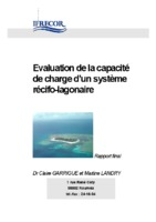 Capacite charge - rapport final.pdf