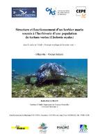 MAY05_herbiers_Rapport_Ballorain_2005.pdf