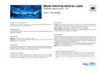 triaenodon_obesus.pdf