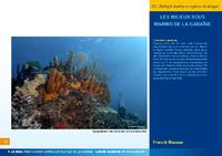 GUAD12_CRDP article_mazeas_2011.pdf