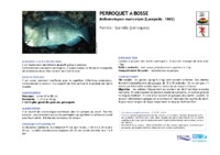 bolbometopon_muricatum.pdf