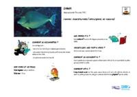 naso_unicornis.pdf