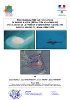 MAY08_etude_mammiferes marins_0208.pdf